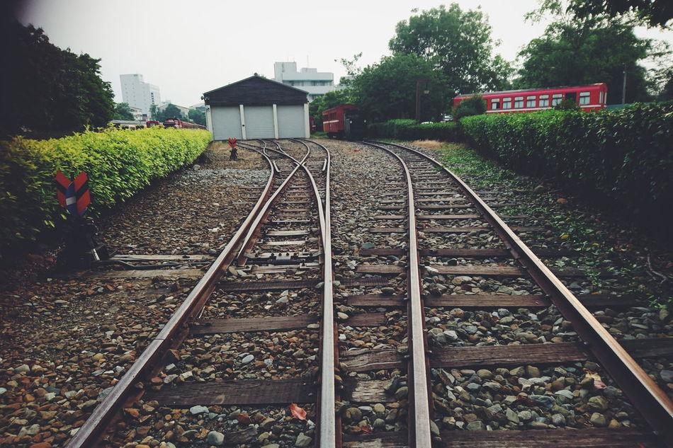 台灣 嘉義 阿里山 鐵道 鐵軌 Rail Train Taiwan SonyZ5 Stones View Retro Style Cellphone Photography Raiways