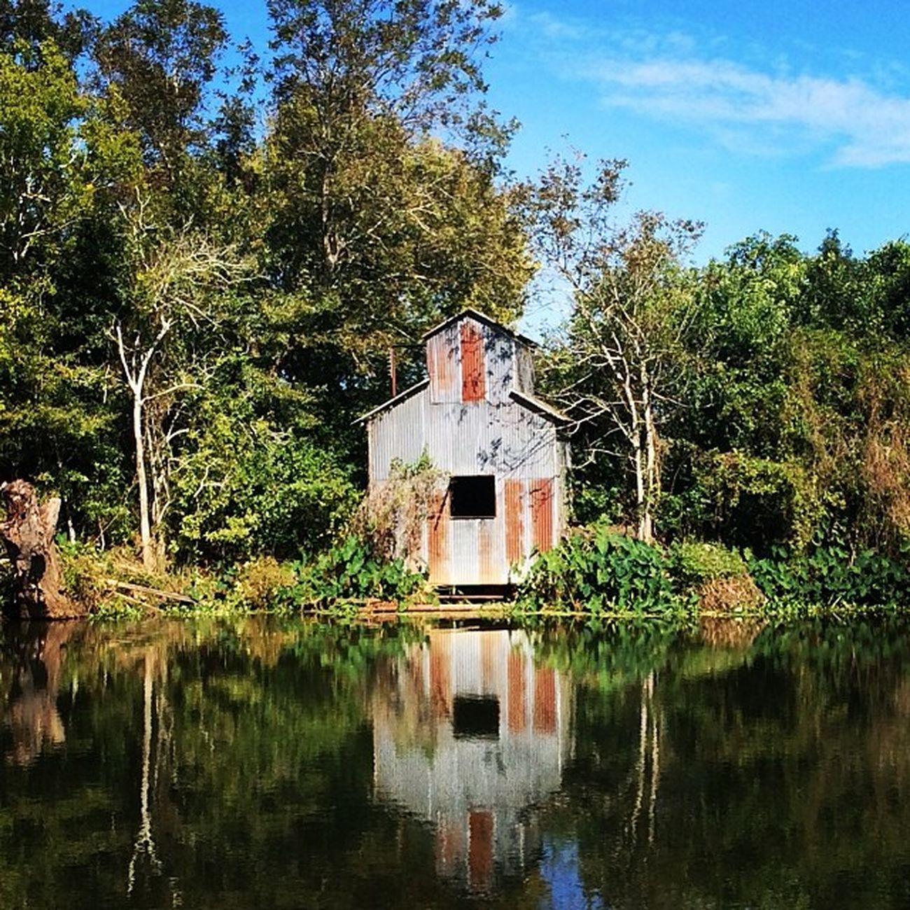 Abandoned Barn Broken Abandonedplaces Urbandecay Louisiana Bayou Bluesky Urbanexploring Trailblazers_rurex Trb_members1 OutcastAmerica Abandonedamerica Onlylouisiana Louisianatravel Abandonedlouisiana Trb_love_shack_baby