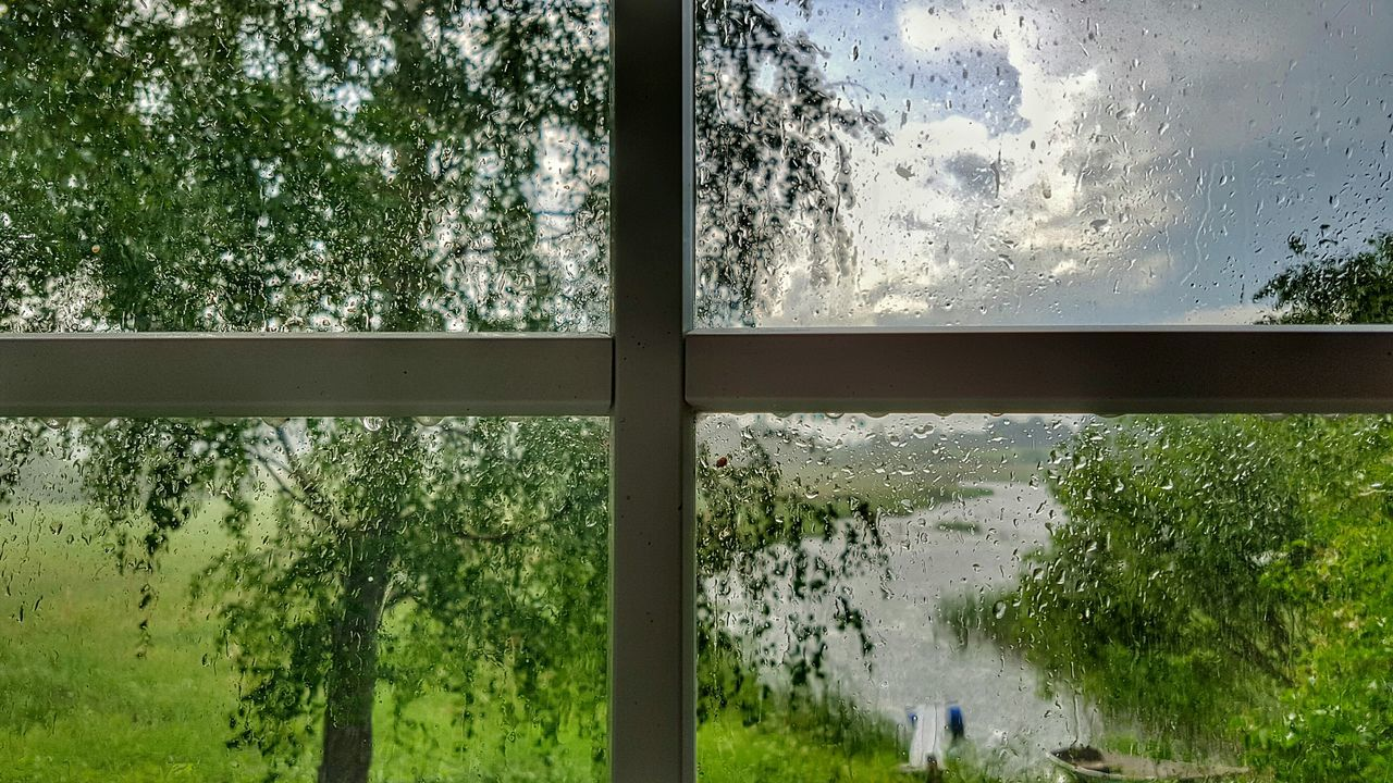 Rainy day feeling Rainy Days Rain Window Scenery Shots Scenery No Stress Nature View Green Summer EyeEm Best Shots - Landscape EyeEm Gallery EyeEm Best Shots - Nature EyeEm Best Shots Tranquility Arrangement Sky Water Cloudy Variation Tranquil Scene Scenics No People Side By Side