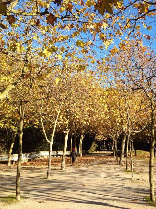 walking...! Enjoying Life EyeEm Porto Excercising Naturelovers