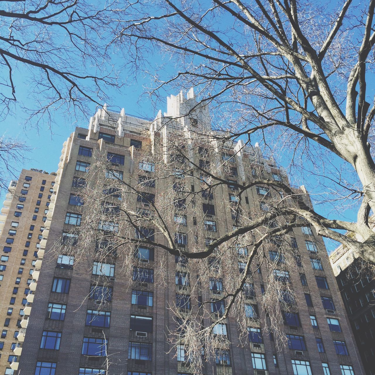 NYC Manhattan Building TallBuilding Brightbuilding Sunny Building UWS Upperwestside Tall Tree Sandybuilding Blue Sky Many Windows Skyscraper