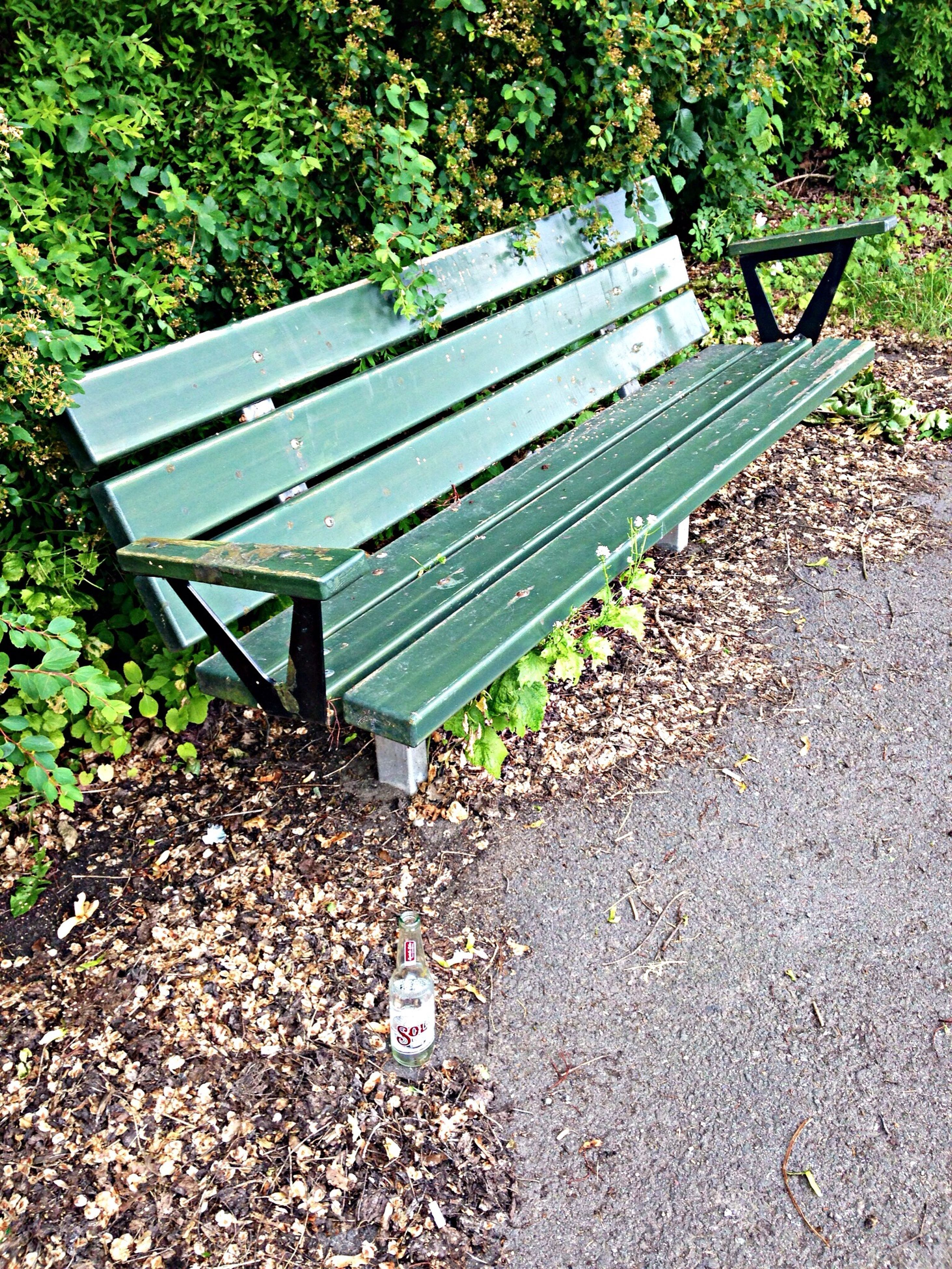 empty, absence, bench, park - man made space, tree, sunlight, the way forward, plant, day, shadow, high angle view, outdoors, nature, leaf, growth, railing, tranquility, no people, seat, park