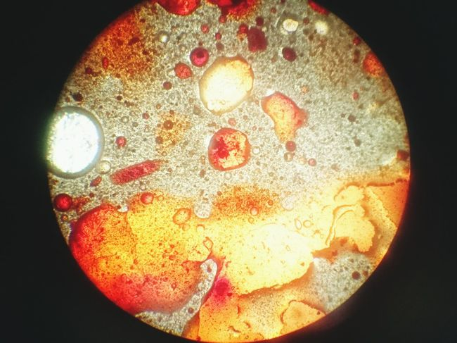 Close-up No People Circle Representation History Symbol Microscope Microscopic View Food Dye Dye Extreme Close Up Extreme Close-up Orange Color