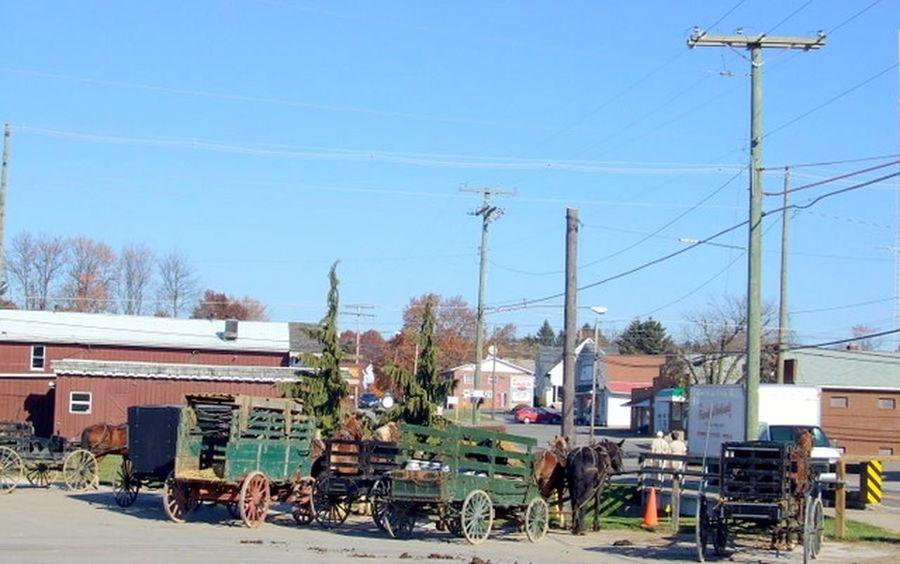 Amish Amish Buggy Amish Communi Amish Horses Amish Life Amish Livi Wagon  Wagons
