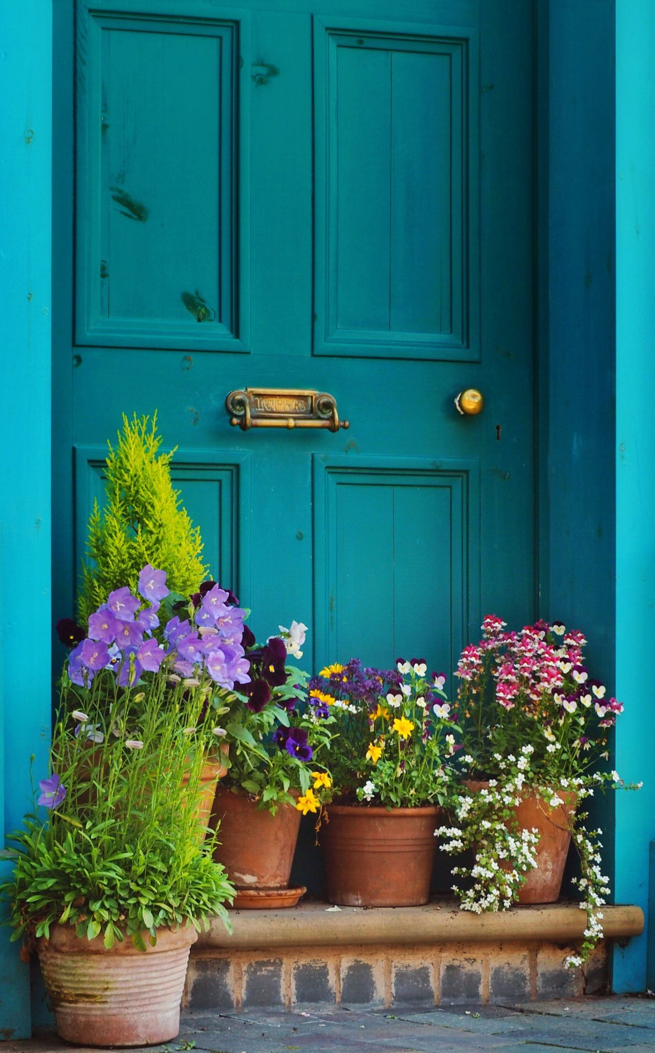 Flowers in a Doorway! Walking Around OlympusPEN Flowers Door Taking Photos Summer Views Doorway Doors Art Is Everywhere