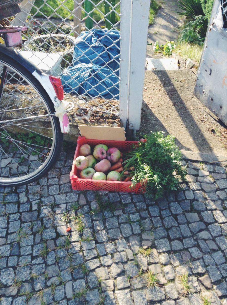 Beautiful stock photos of fruit, Apple, Berlin, Carrot, Cobblestone