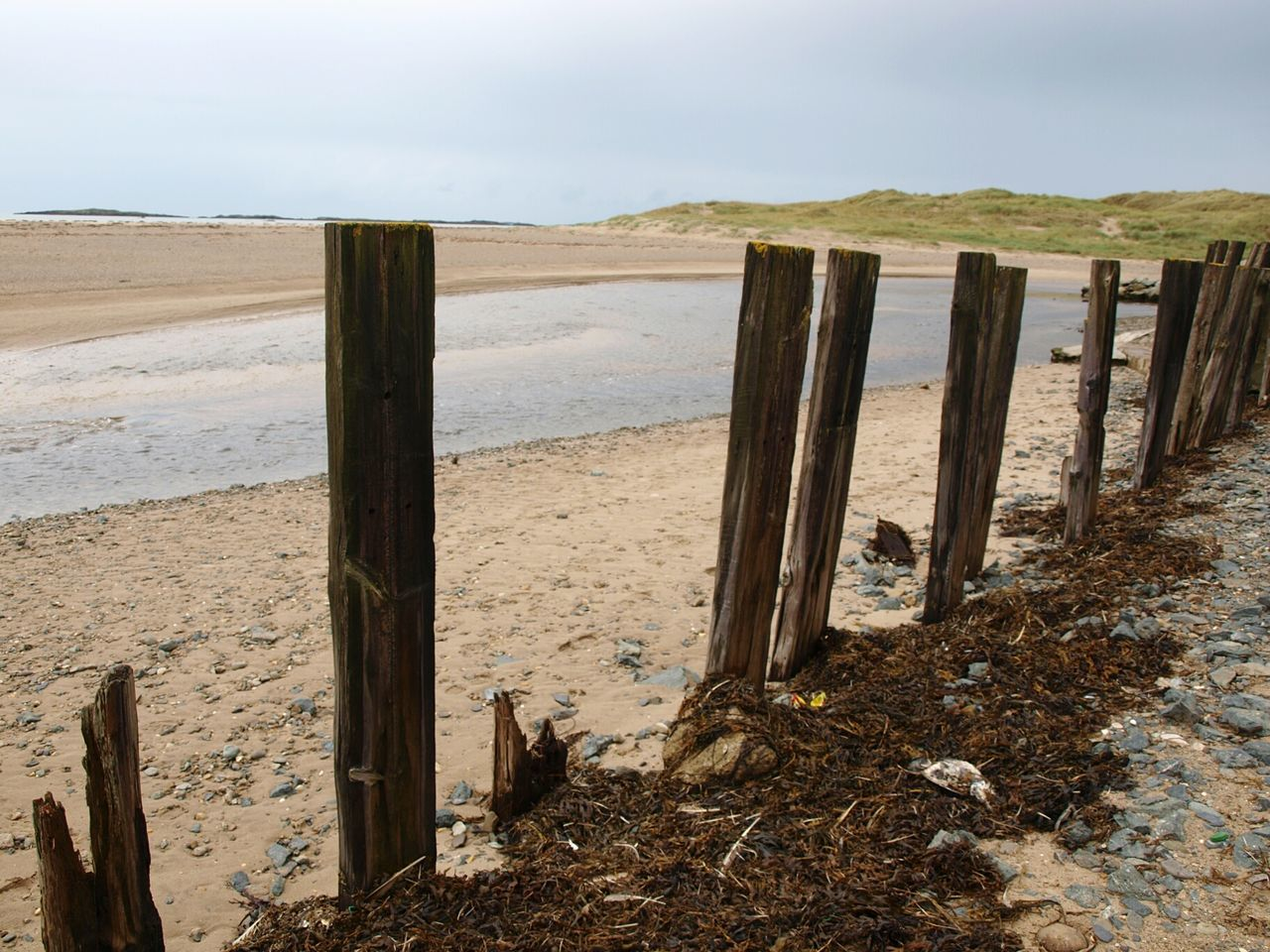 Beach Sea Sand Landscape Wooden Post Water Day Horizon Over Water Outdoors Nature Sky Sand Dune No People Pebbles Seaweed Scenics Nature Freshness