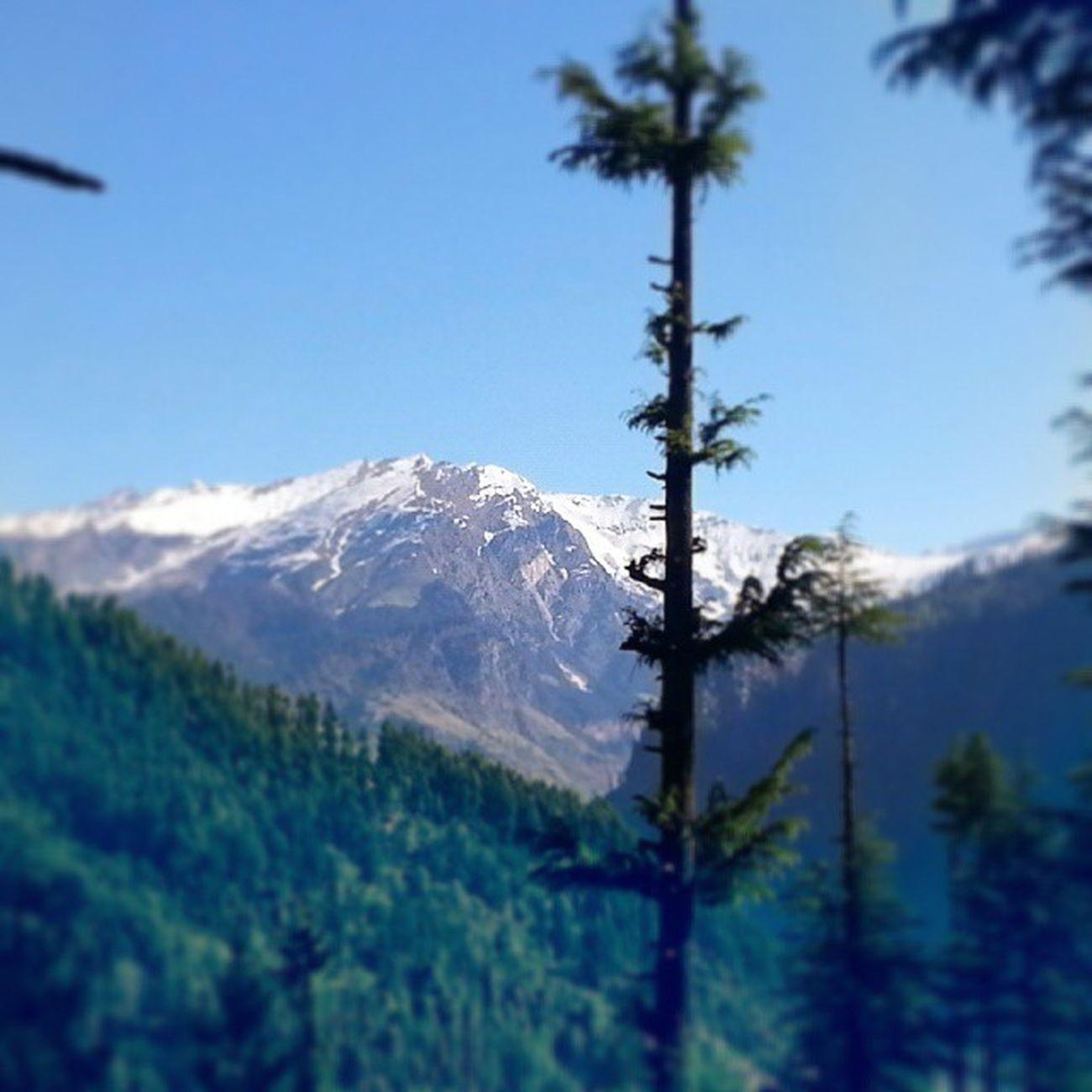Dawn Himalayarange Chillmorning Selfphotography Selfwork Mobilephotography