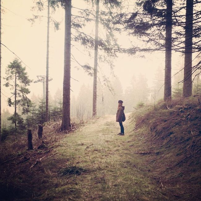 Deep in the woods. Belong Anywhere Blackforrest Homeland