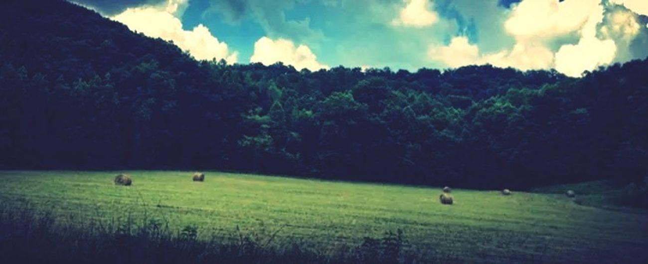 Country EyeEm Nature Lover EyeEm Best Shots EyeEm