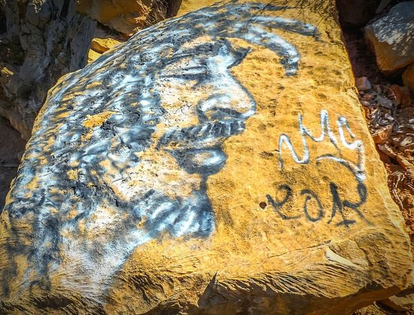 No People Close-up Nature Day Outdoors Graffiti Art Beauty In Nature Benimellal Gnawa Music FaceArts Low Angle View Binouidane MoroccoTrip Wildart River Dum Trip Memories ❤ Wildlife Photography Wildlife Wild Nature