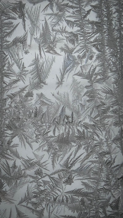 Macro Photography Close-up Pattern No People Window Frost Nature