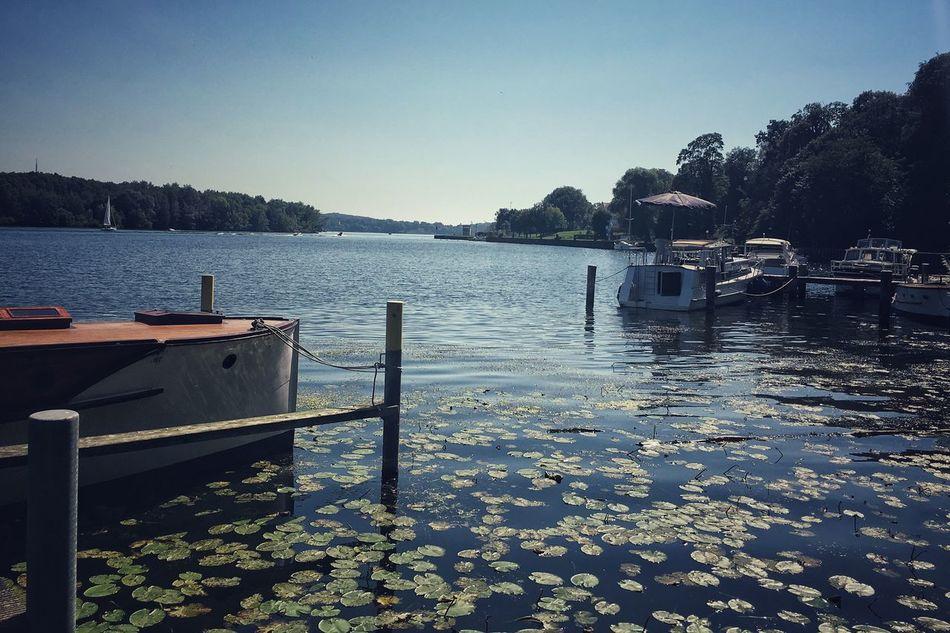 Lake Lake View Mooring Fastening Moorage Mooring Rope Shore Water Lilies Beauty In Nature Summer Day Weekend Activities