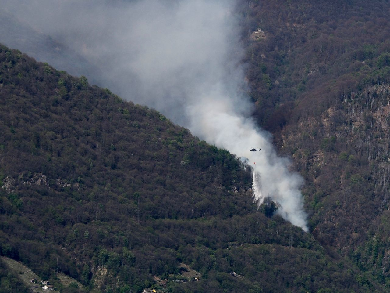 Helicopter dropping water on a forest fire above Gordola, Ticino, Switzerland Beauty In Nature Day Fire Fire Fighters Fire Fighting Equipment Forest Forest Fire Helicopter Landscape Mountain Nature No People Outdoors Scenics Tree Water Wild Fire