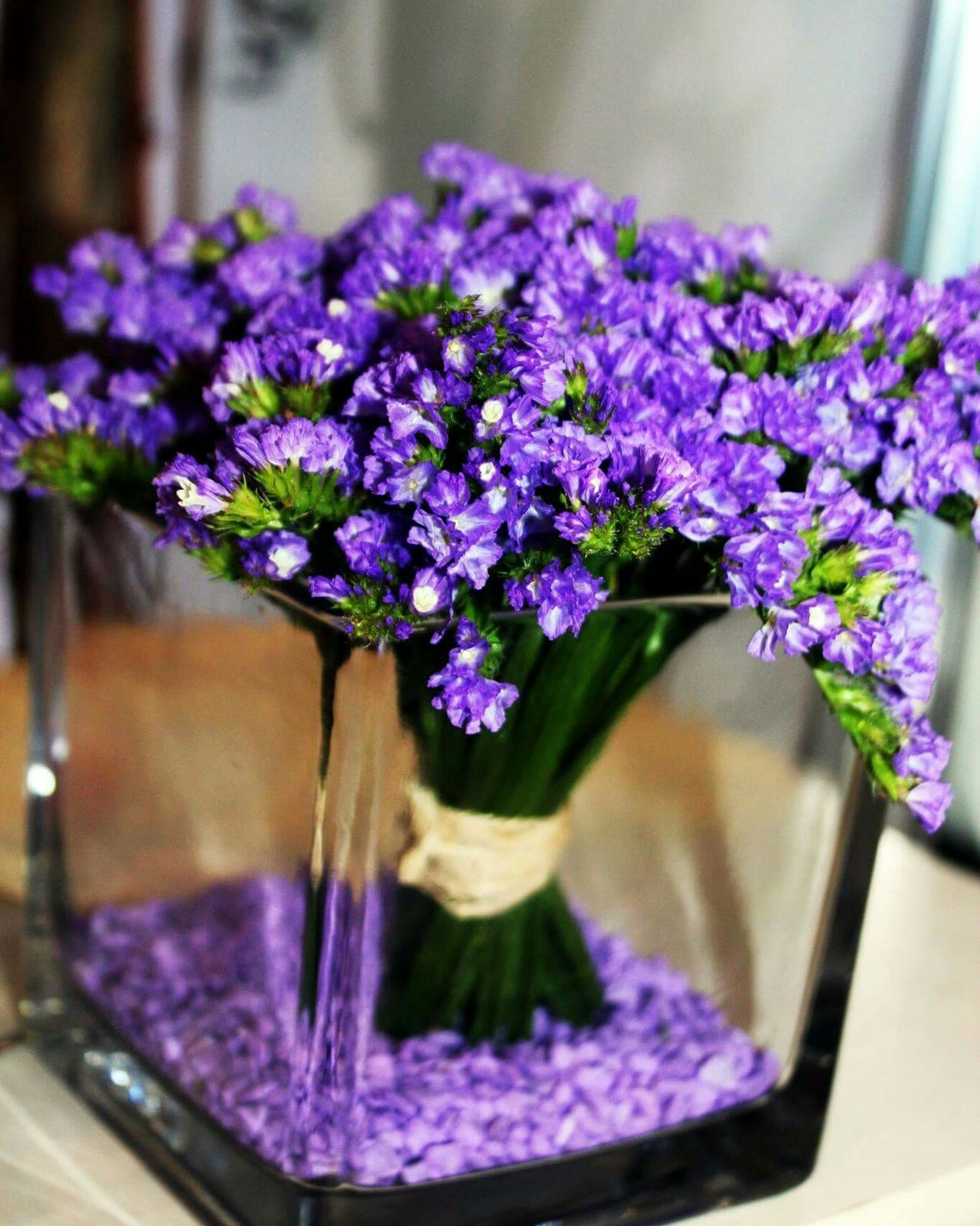 Flower Fragility Freshness Purple Flower Head Nature Petal Plant No People Beauty In Nature Close-up Day Outdoors