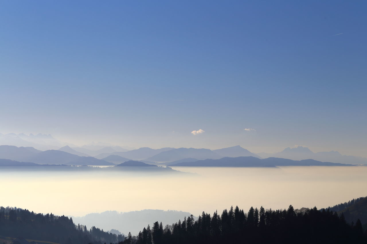 Above the fog, looking towards Rigi. Air Pollution Betterlandscapes Blue Blue Sky Copy Space Enjoying Life Eye4photography  The Great Outdoors - 2017 EyeEm Awards EyeEm Masterclass EyeEm Nature Lover Fog Fog Boundary Forest Landscape Mountain Mountain Range Nature No People Panorama Rigi Scenics Silhouette Smog Tranquil Scene Zürcher Oberland