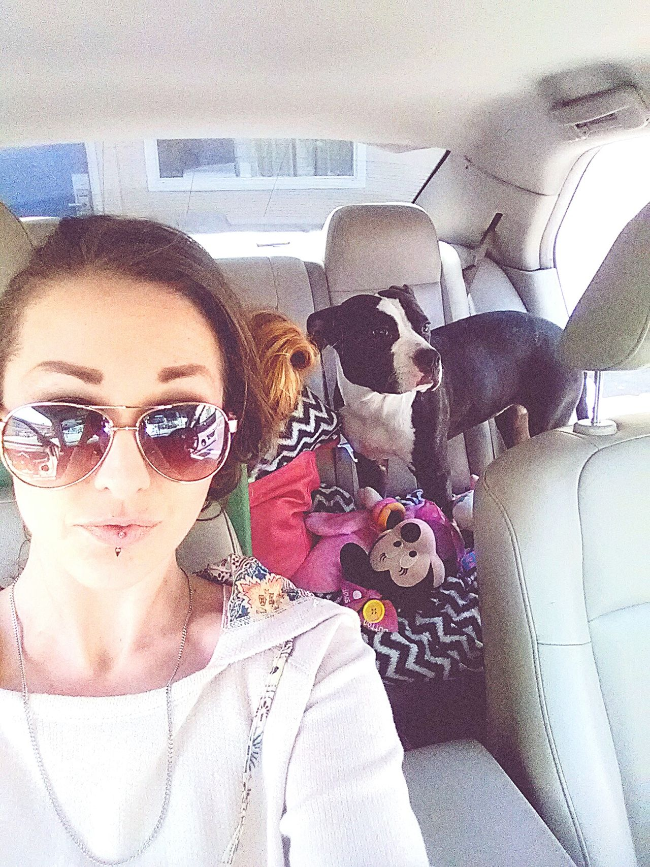 PitBullNation Pitbull Life Style RoadDog Lovabull Don't Bully My Breed Gangster Of Love Beautiful Woman Beautiful People LoveLife❤️ Sexygirl Audrey XO Real People Beauty Lovely Girl White Girl Swag Enjoying Life White Girls So Cal Dog Portrait Sunglasses Happiness