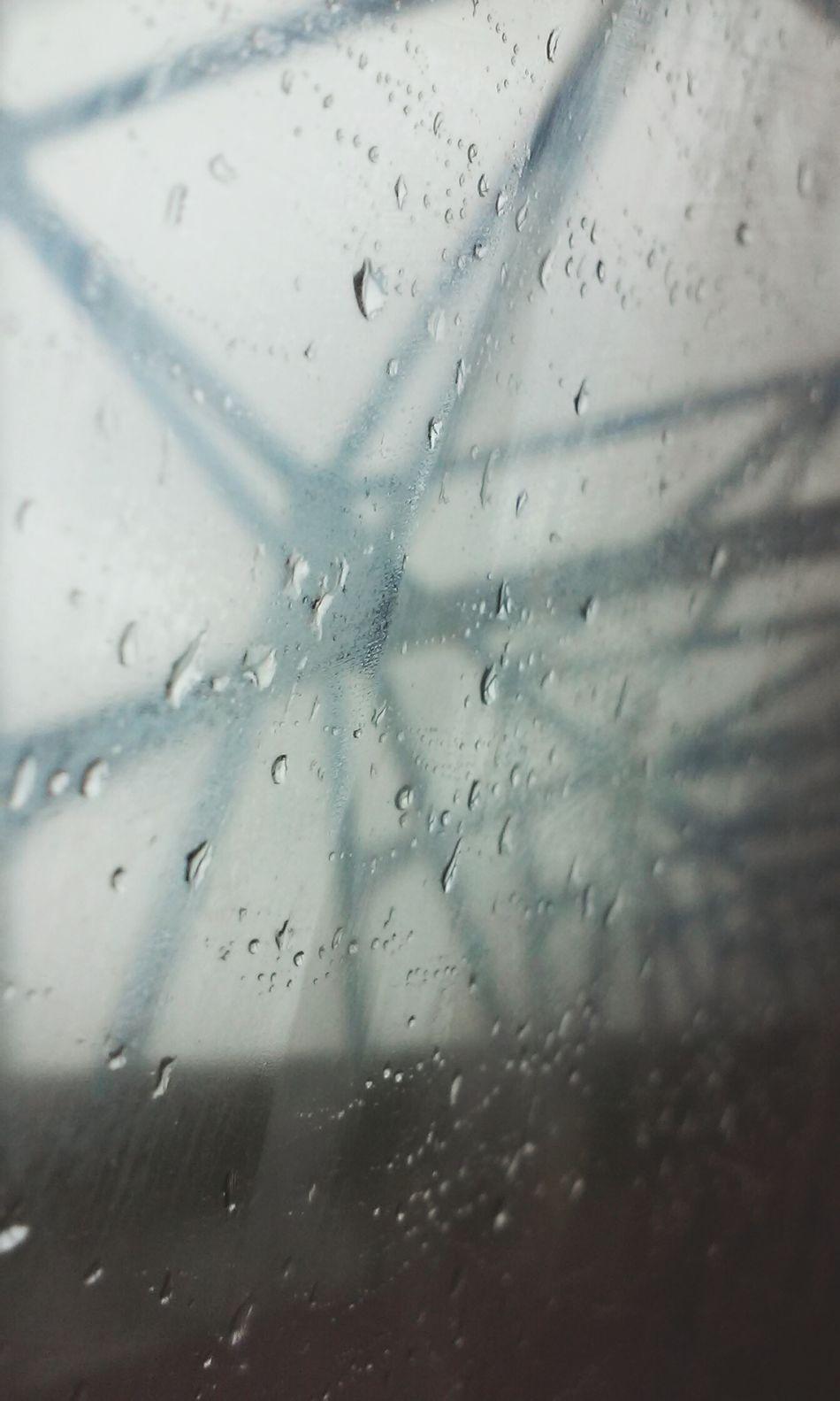 Popular Photos Rain Bluebridge