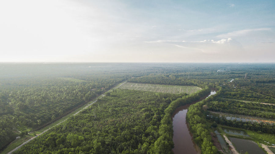 Aerial View Agriculture Beauty In Nature Cloud - Sky Day Landscape Nature No People Outdoors Patchwork Landscape Scenics Sky Tranquility Tree Benut Pontian  Aerial Photography Dronephotography High Angle View Aerial Shot Malaysiaphotography