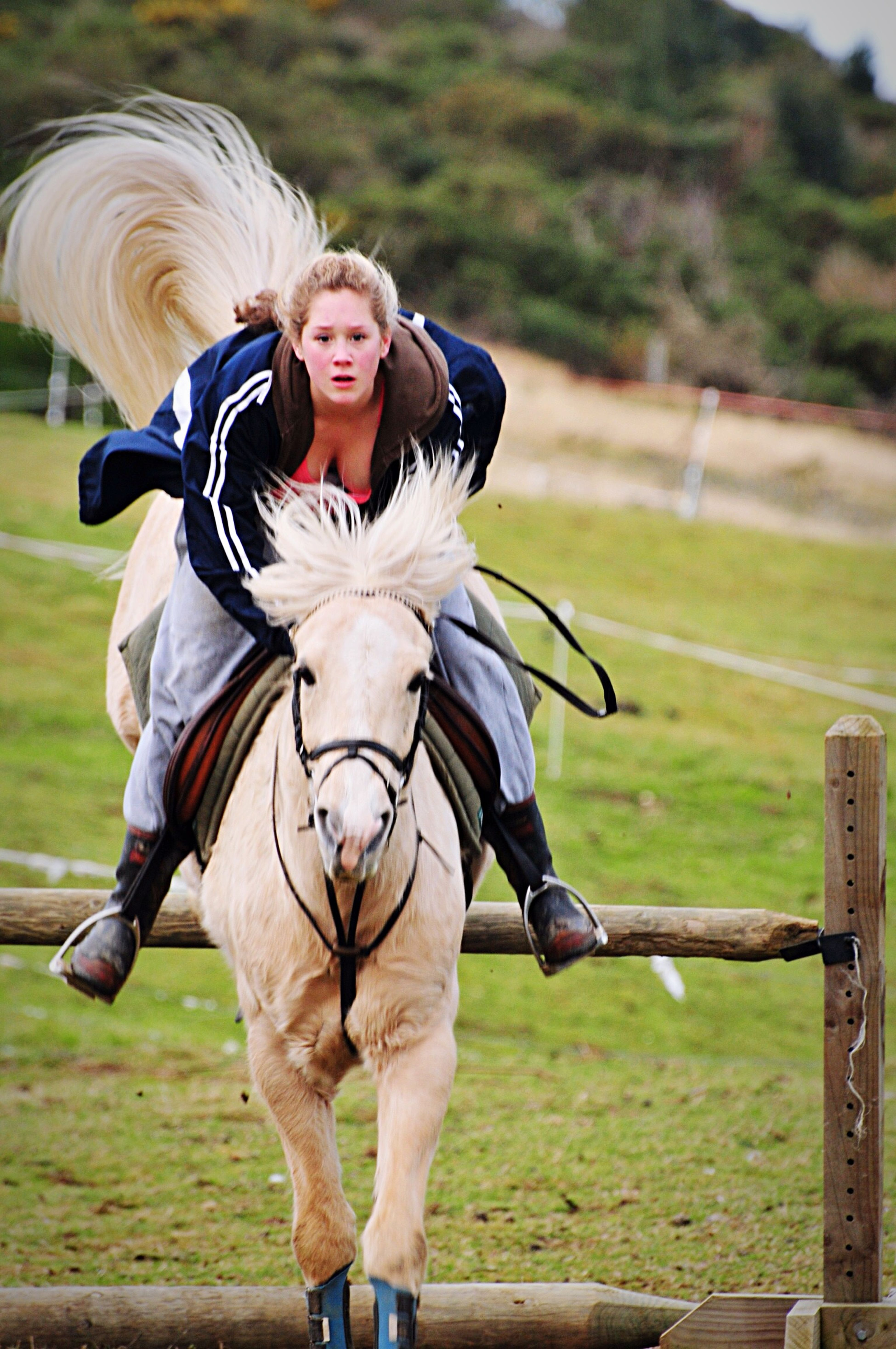 OpenEdit Horse Riding Horse Jumping Pet My Little Pony Enjoying Life Check This Out Horse What A Jump