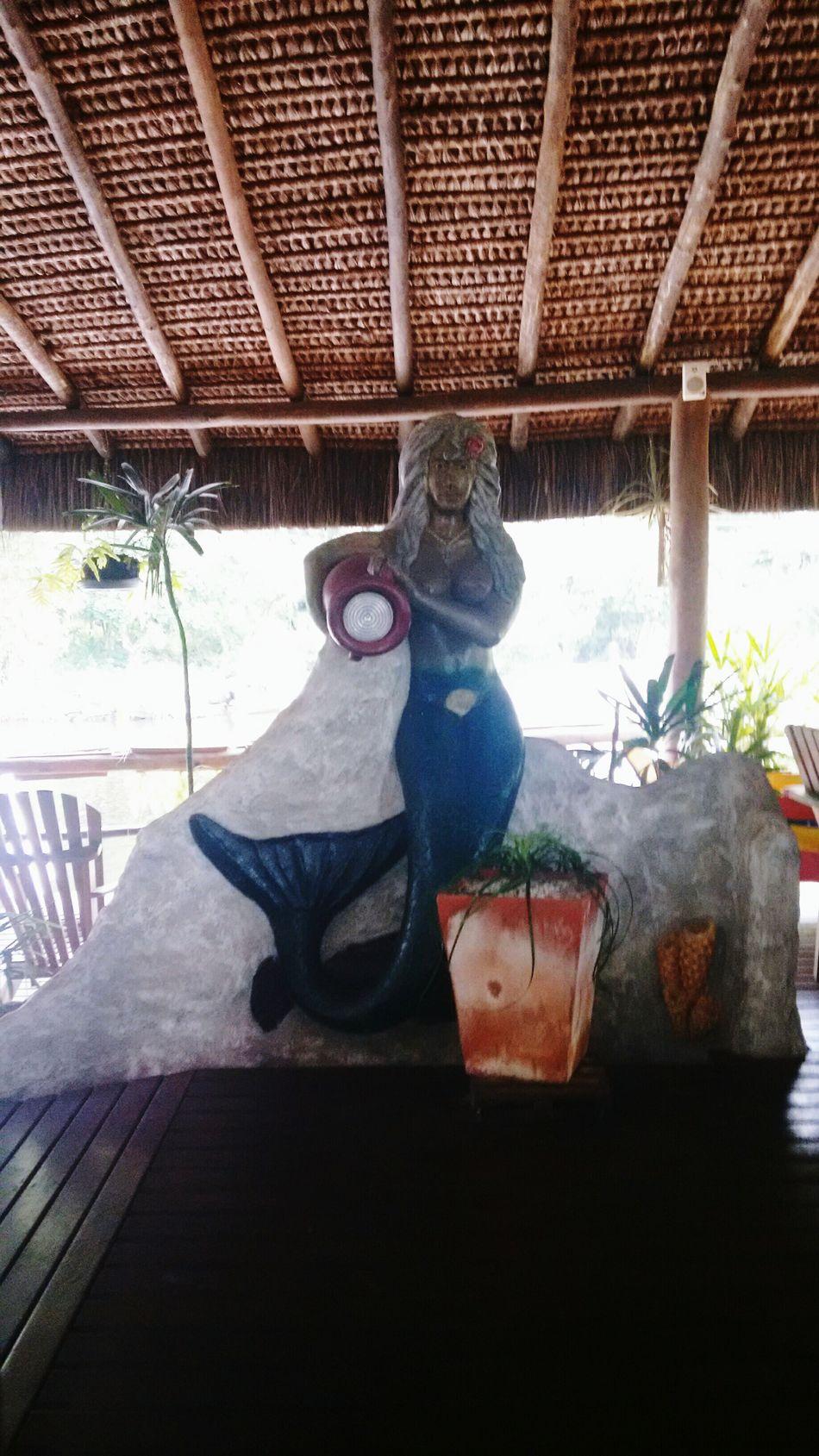Statue Beach Barra Do Una