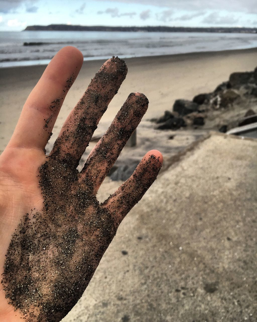 human hand, beach, human body part, one person, sand, shore, sea, focus on foreground, close-up, outdoors, real people, day, horizon over water, nature, water, sky, people