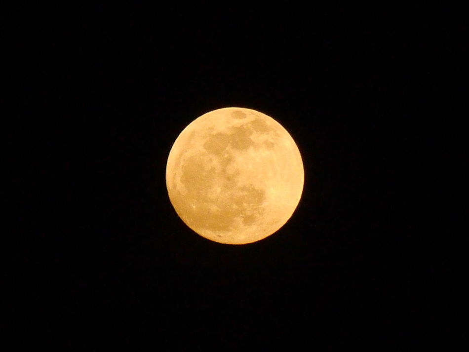 Beautiful stock photos of full moon, Astronomy, Circle, Clear Sky, Copy Space