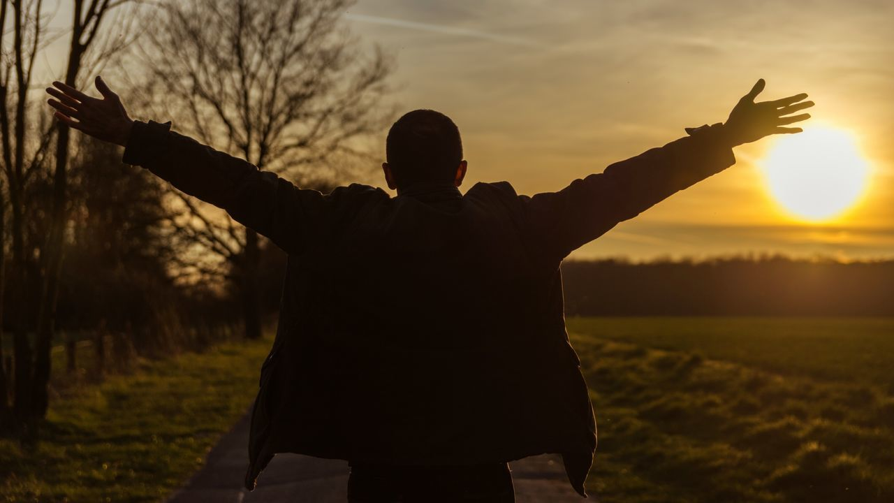 sunset, gesturing, real people, silhouette, one person, standing, arms outstretched, rear view, leisure activity, sky, lifestyles, outdoors, field, nature, men, communication, beauty in nature, tree, day, people