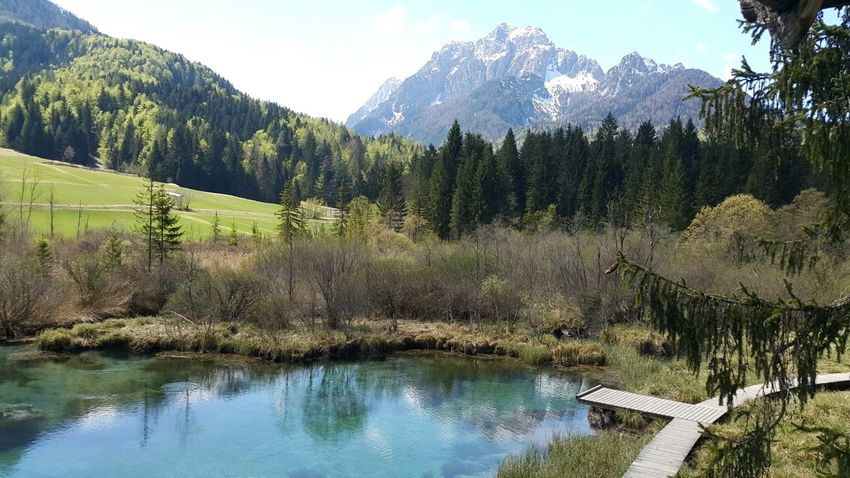 Zelenci, Slovenia Zelenci Slovenia Lake Majestic Idyllic Travel Destinations Remote Non-urban Scene Water Mountain Range Mountain Tranquil Scene Tree Reflection Green Color Landscape Beauty In Nature