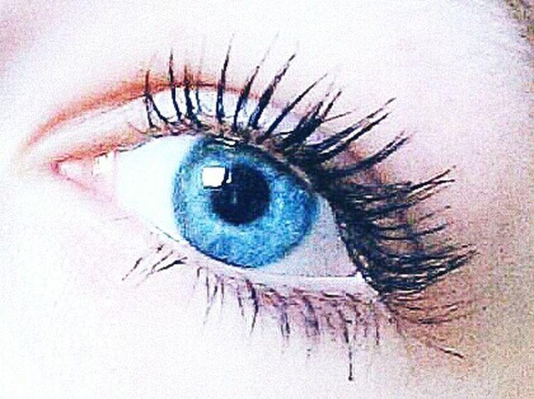 Blue Blau Eyes Blue Eyes Meinauge