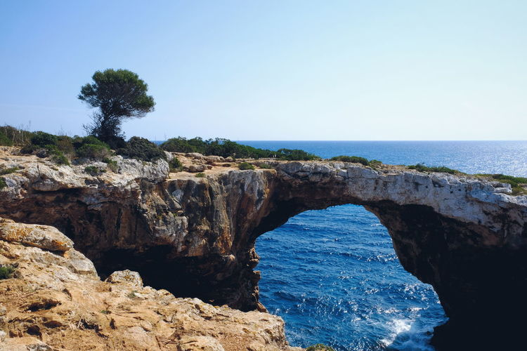 Tree Cave Cala Varques EyeEm Selects Ocean Ocean View Mallorca Mallorcaphotographer Sea Beach Nature Blue Water Rock - Object Vacations Horizon Over Water Clear Sky Sky Beauty In Nature Scenics Travel Destinations Outdoors No People Day