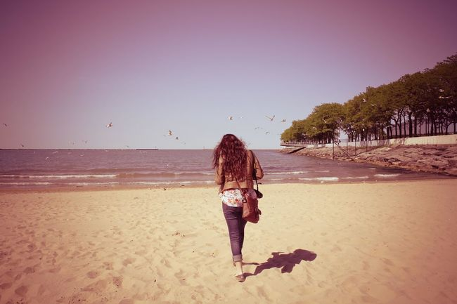 Walk away, walk away. Battle Of The Cities Beach Chicago Clear Sky Flock Of Seagulls Flying Bird Flying Birds Horizon Over Water North Avenue Beach Pink Tint Rear View Walking Away Water