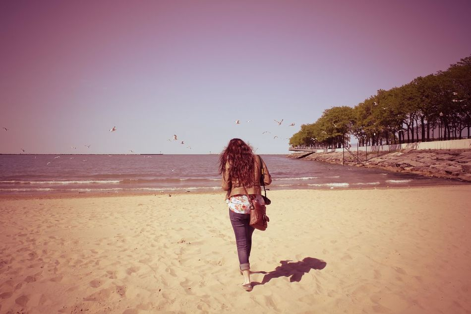 Walk away, walk away. Battle Of The Cities Beach Chicago Clear Sky Flock Of Seagulls Flying Bird Flying Birds Horizon Over Water North Avenue Beach Pink Tint Rear View Walking Away Water New Life New Vintage