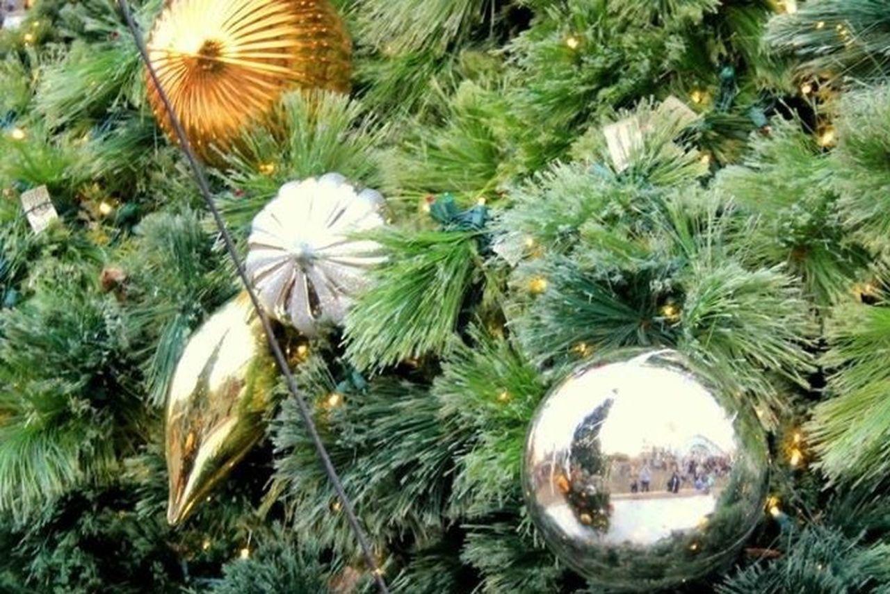 Christmas Lights Christmas Decorations Christmas Fun Twelve Days Of Christmas On Eye Em Reflection Christmas Time Williamsburg