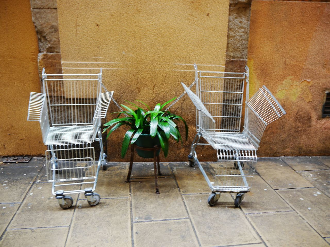 Take two... Shopping Cart Consumerism Chair No People Outdoors Day Full Frame Plant