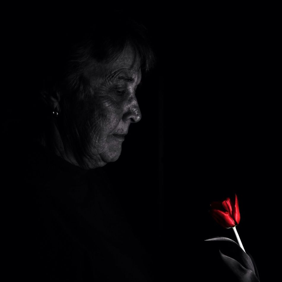 Black Background One Person Studio Shot Senior Adult Side View Real People Lifestyles Tulips Red Colorsplash Pop Of Color Monochrome Blackandwhite EyeEm Diversity Long Goodbye Indoors  Flower Fragility Human Hand People One Woman Only Adult Adults Only Freshness Day