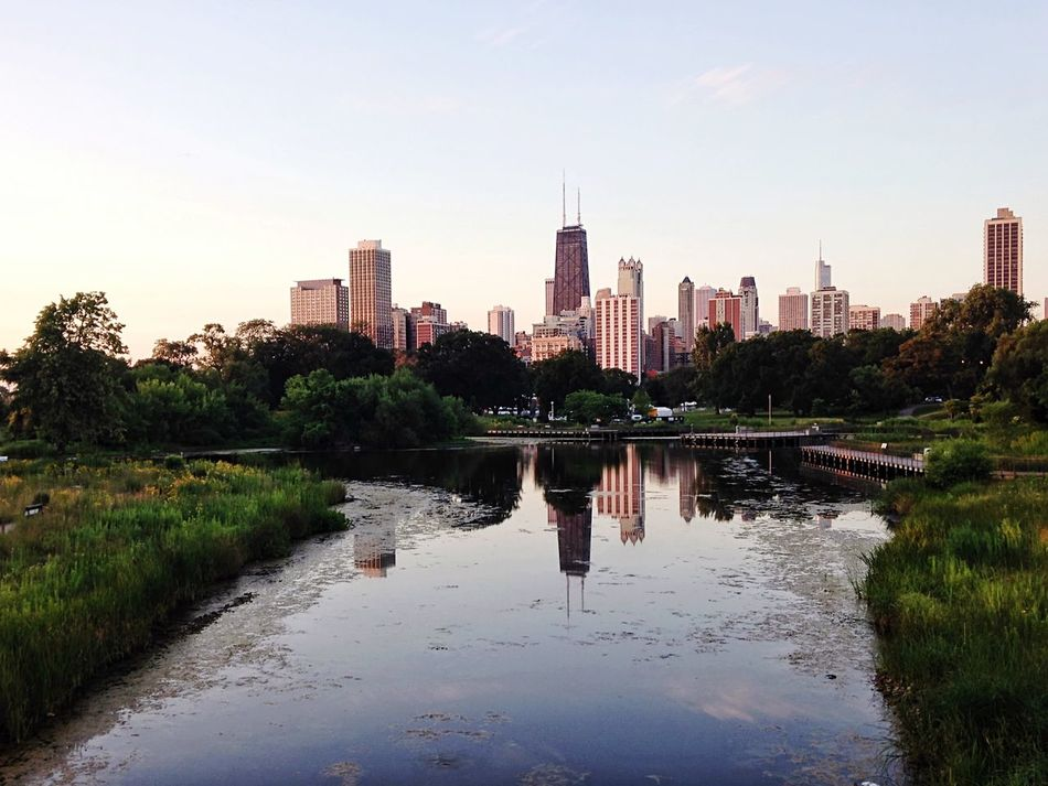 Beautiful stock photos of chicago skyline, Architecture, Building, Building Exterior, Built Structure