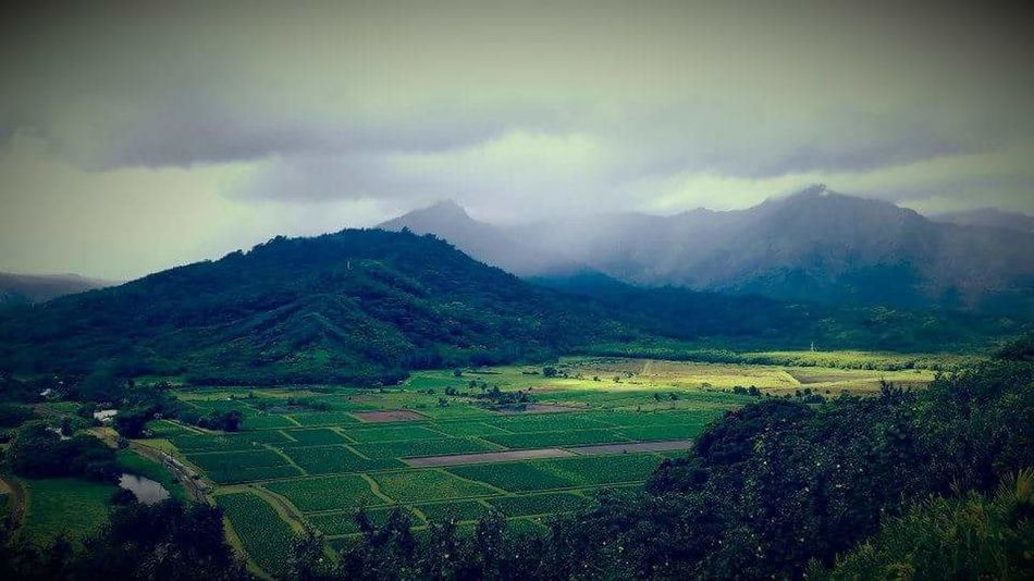 Kauai♡ Scenery Lovelynatureshots Nature Green Wide Open Spaces Mountain And Valley