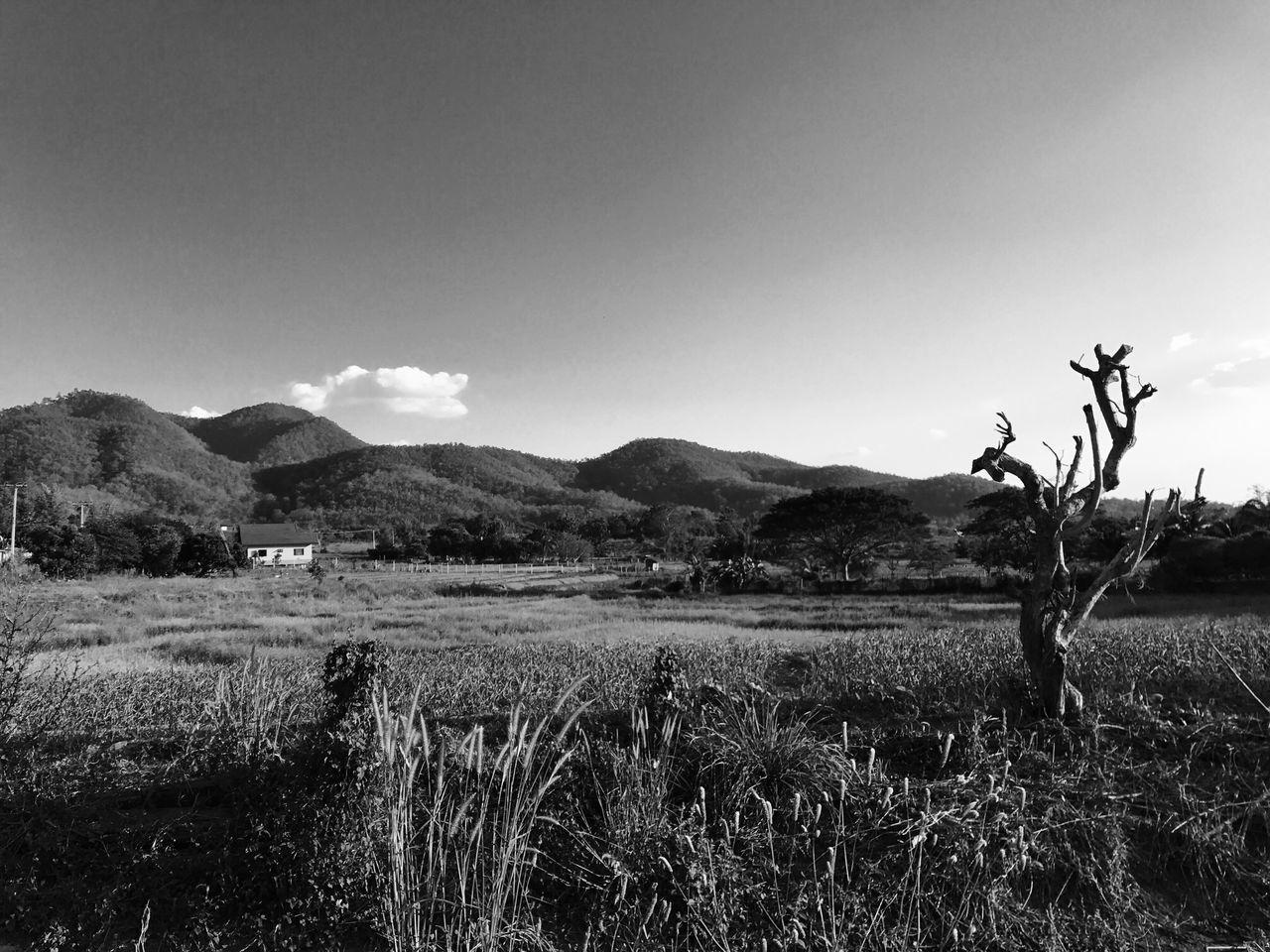 Landscape Blackandwhite Mountain Farm Pai