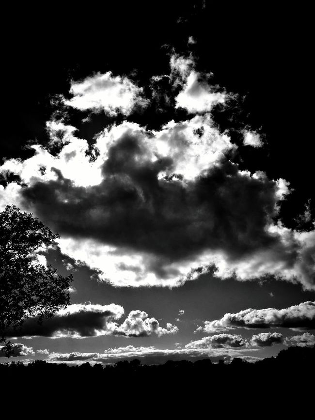 Sky Cloud - Sky Low Angle View Tranquility Scenics Beauty In Nature Nature Tranquil Scene Cloudy Cloud Cloudscape Outline Majestic Day Growth Non-urban Scene Outdoors Remote This Week On Eye Em Mobilephotography P9monochrome No People Storm Cloud Northumberland_uk Northumberland