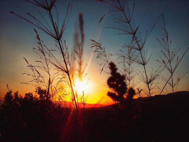 Sunshine Sunset Sunset Silhouettes Highway Sky Red Nature_collection Threedaysgrace Far Far Away Goodnight