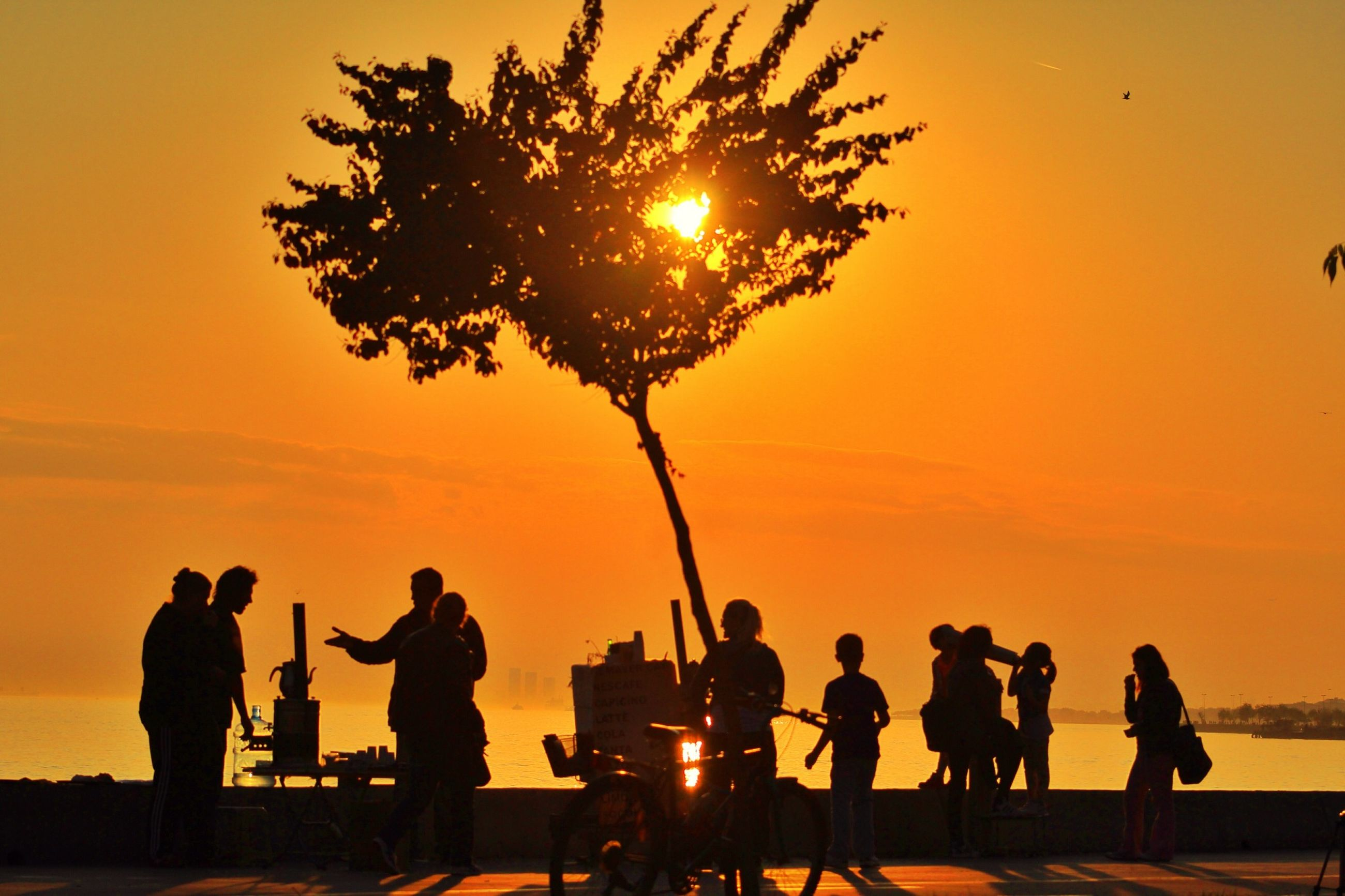 sunset, silhouette, men, orange color, lifestyles, leisure activity, large group of people, person, sun, sky, togetherness, medium group of people, tree, enjoyment, sea, mixed age range, nature, outdoors, sunlight