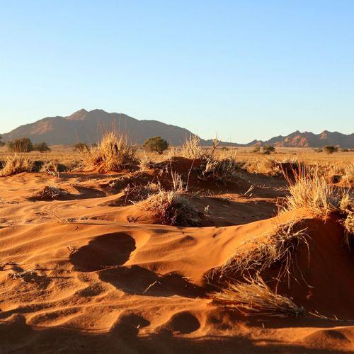 Namibia Namib Desert Namibia, Africa, Desert, Hot,landscape, Gemsbok, Oryx, Sunset, Mountains, Sunset, Dunes Namibia,deadvlei,Africa,landscape,evening,sunset, NamibiaPhotography Namib Naukluft National Park Namibian Landscape Namib Dunes