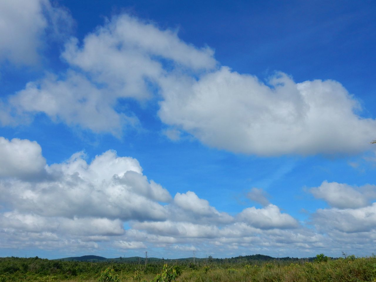 Cloud - Sky Blue Sky Landscape Cloudscape Plain Grass Outdoors Nature No People Day Morning Morning Light Morning View