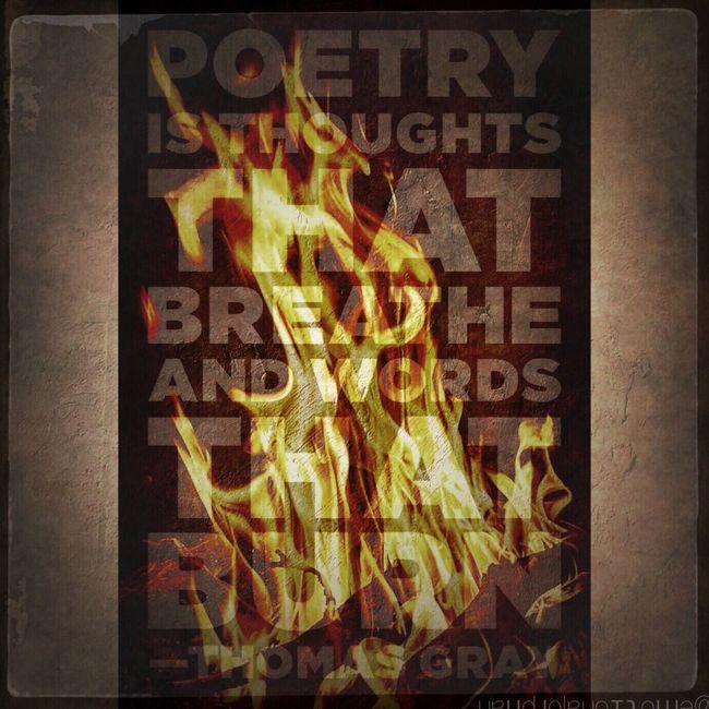 Visual Poetry Iphonesia Words IPhoneography Visualpoetry Emotionalorphan Temptation