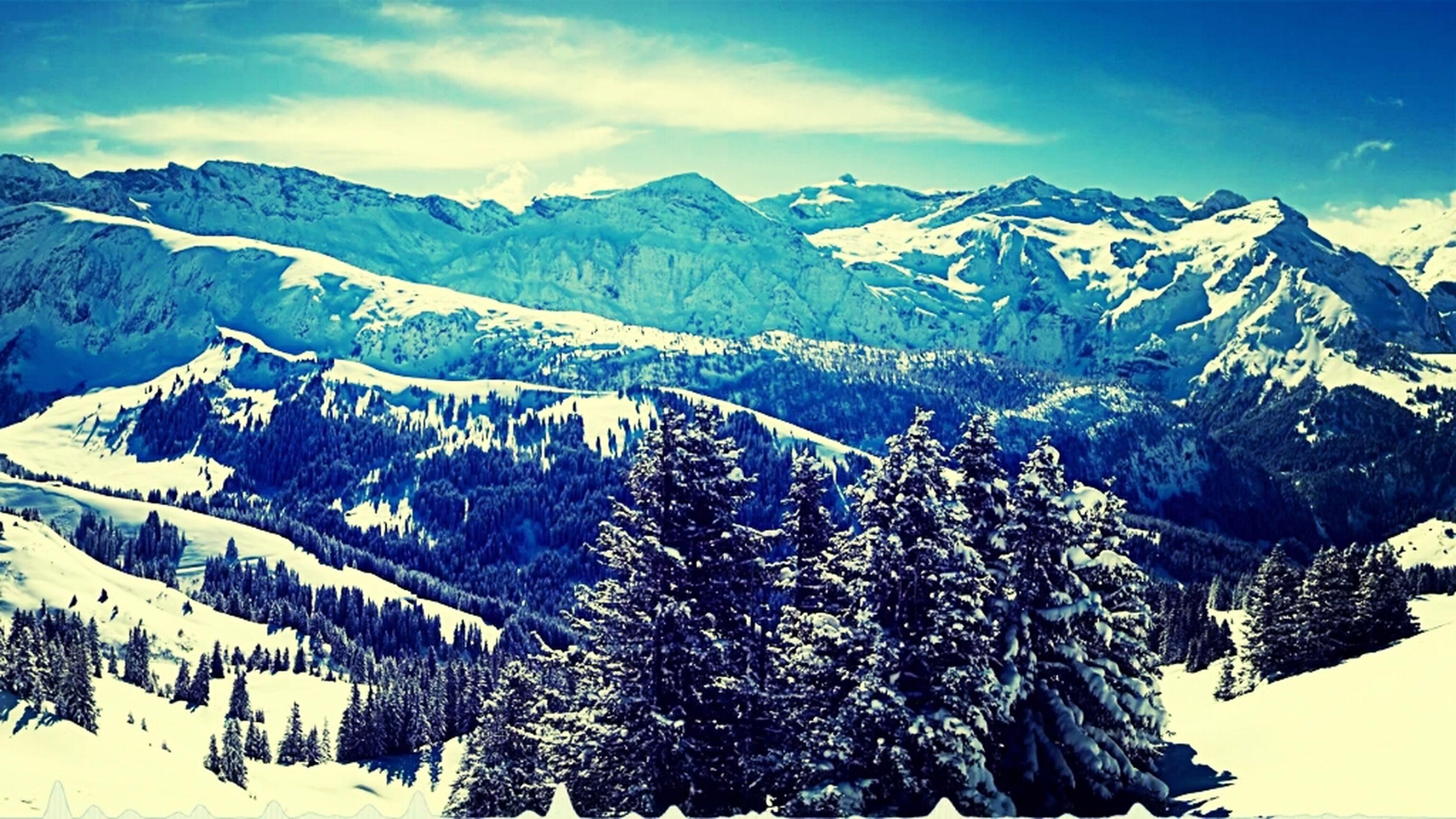 Snow Enjoying Life Awesome Natural Snowboarding Fresh Produce DOPE #sunset #sun #clouds #skylovers #sky #nature #beautifulinnature #naturalbeauty #photography #landscape Fresh Well Damn