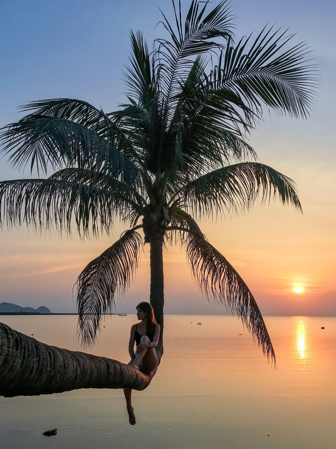 Adult Adults Only Beach Beauty In Nature Good Vibes Horizon Over Water Idyllic Nature One Person One Woman Only Outdoors Palm Tree People Photography Themes Relaxing Scenics Sea Sitting Sky Sunset Tranquility Tree Vacations Water Young Women
