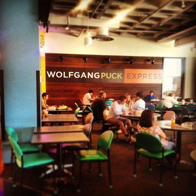 Wolfgang in Ackerman! Why do good things always happen after I graduated?? UCLA  Bruins Pride Ackerman wolfganginvasionnotfairdontbejealouslaiguclaigalwaysabruin