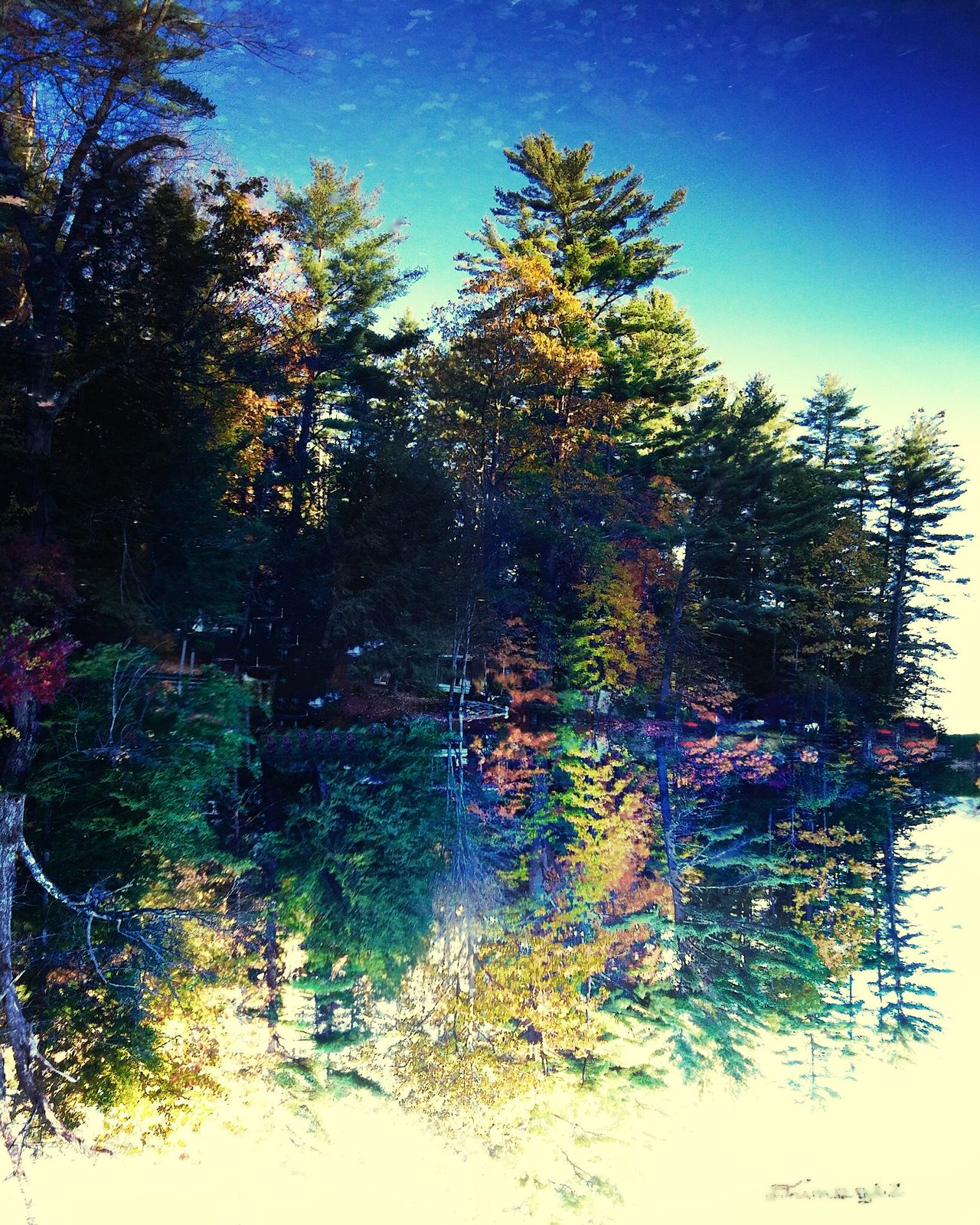 'Reflection' New Hampshire. IPhoneography EyeEm Painterly Refrigerator Artz Drimagez DXOpro 9 Aperture Water Reflections NEM Submissions Supernormal My Unique Style