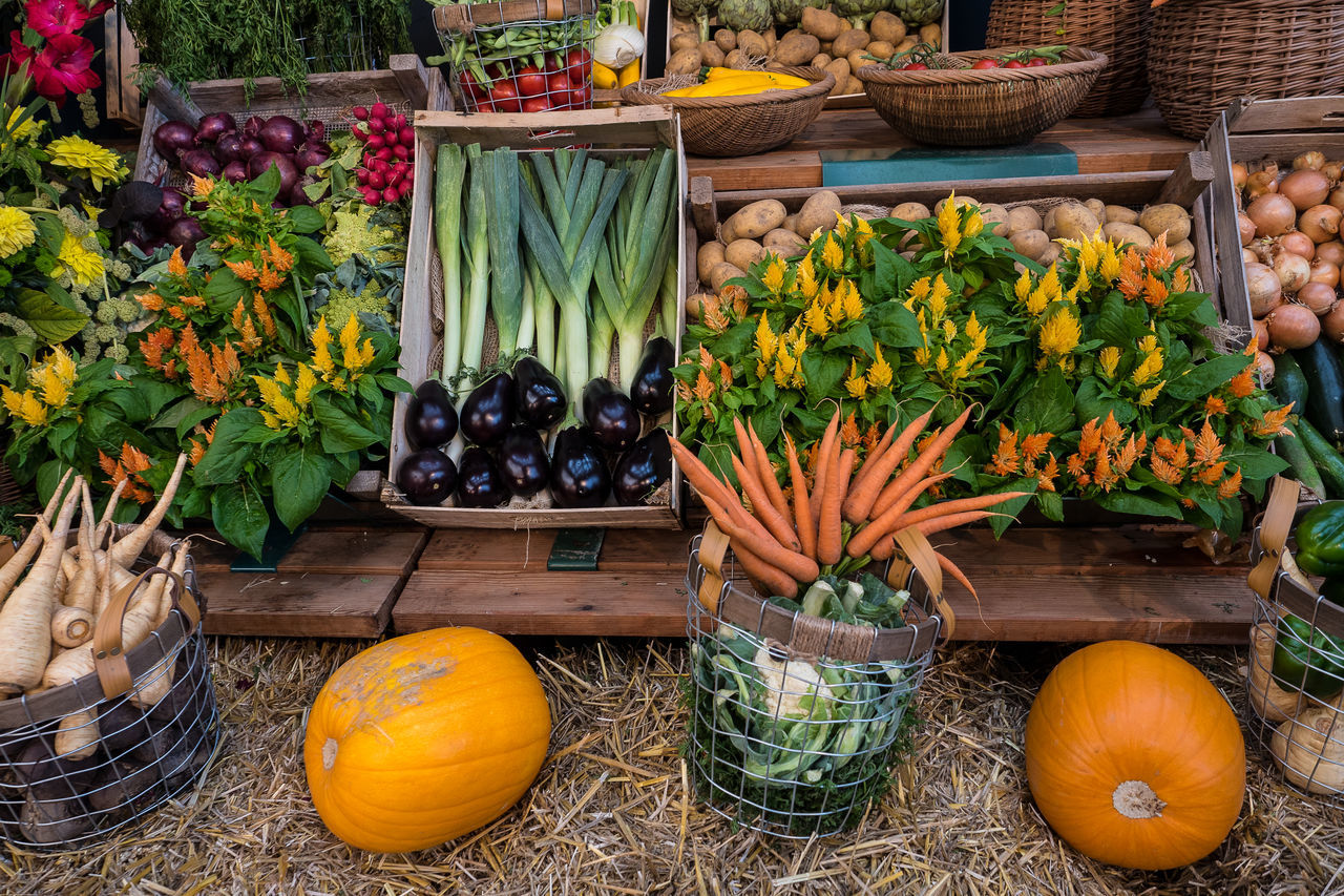 Autumn Colors Decoration Freshness Fruit Fruits Group Of Objects Market Pumpkins Variation Vegetables